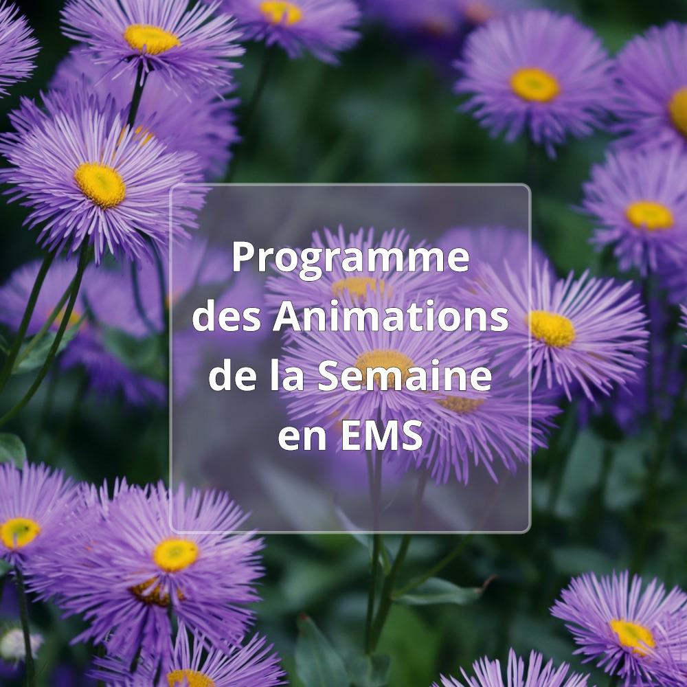 Programme de la semaine en EMS